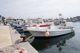 Santa Pola fisher harbour